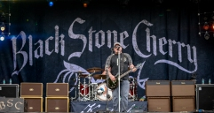 Blackstone Cherry-7989