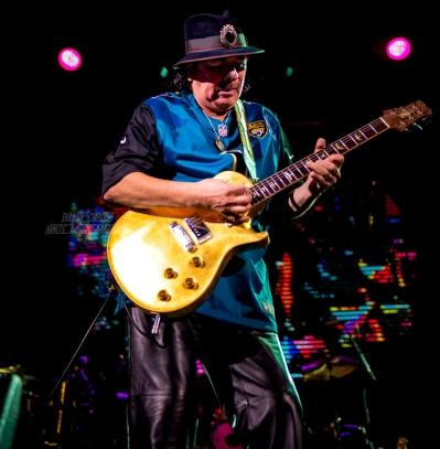 Santana-4469